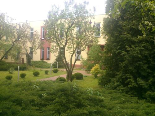tereny zielone (2)